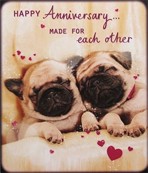 pug anniversary card ean 5018930816139 photographic greeting card plk6139 anniversary pug puppies