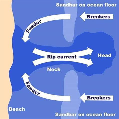 rip diagram undertow in finding dory science on