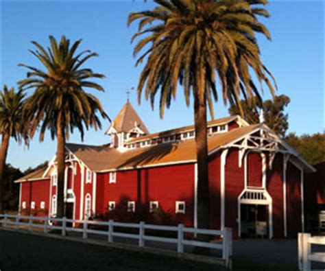 Stanford Barn Shopping Center stanford equestrian