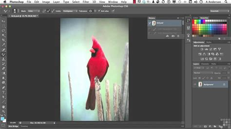 adobe photoshop cs6 tutorial color replacement infiniteskills
