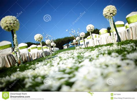 royalty free up pictures images and stock photos istock outdoor wedding royalty free stock image image 29775926