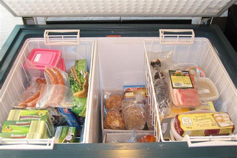 Freezer Frozen Food freezing food and frozen food safety