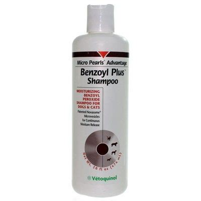 peroxide for dogs benzoyl plus shoo for dogs and cats benzoyl peroxide vetrxdirect