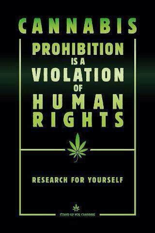 violations human righhts quotes about human rights violations quotesgram