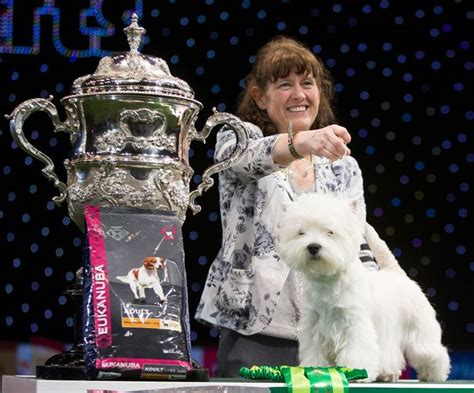 best in show when is crufts 2017 schedule how to get tickets and when to the show
