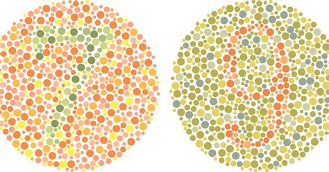 green color blindness test color blindness www imgkid the image kid has it