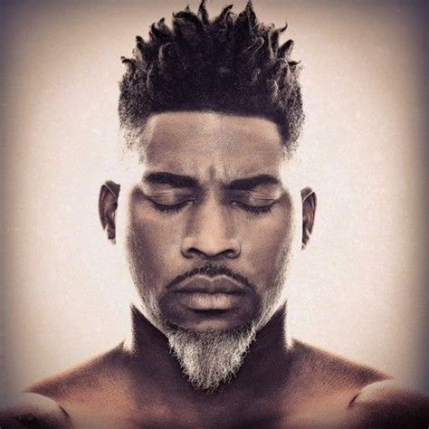 african american men beard styles 133 best african american men with gray beards images on