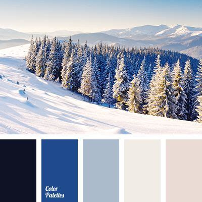 colors of winter 25 best ideas about winter color palettes on