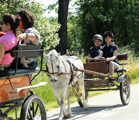 carrozze per cavalli in vendita carrozze per pony 28 images calesse cavallo clasf