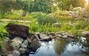 gartengestaltung steingarten steingarten anlegen gestalten ideen bilder beispiele