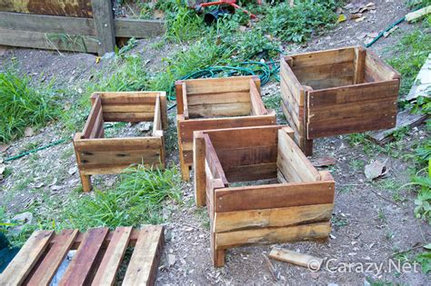 Tree Planter Boxes by The Pered Princess Plant Dilemma Carazy Suburban