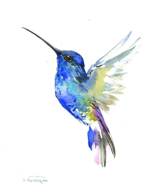 watercolor tattoos hummingbird 25 best ideas about hummingbird drawing on