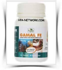 Gamat Emas Sea Cucumber Kapsul Hpai Original Ori gamalife hpai jual gamalife hni garansi original herbal kualitas premium asli