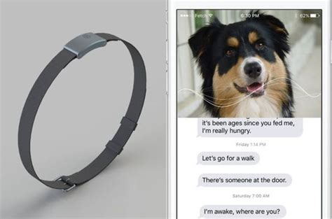 dogs that talk whatsyapp lets your talk to you ubergizmo