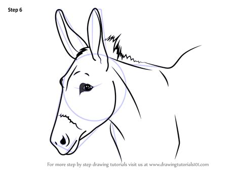 donkey head coloring page learn how to draw a donkey face animal faces step by