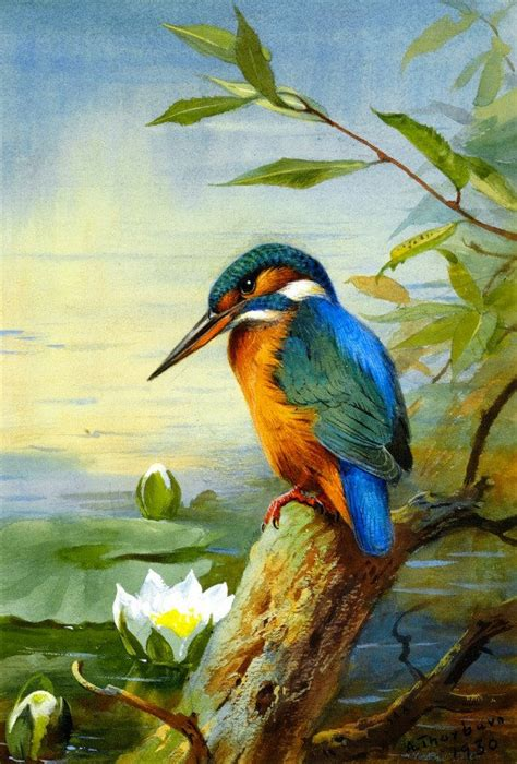 acrylic painting kingfisher kingfisher cross stitch pattern pdf format by diana70 on