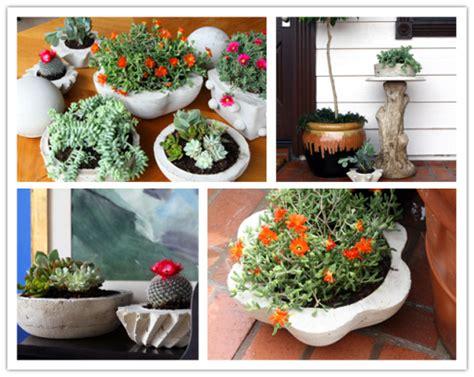 how to make concrete planters how to make diy concrete planters diy tag