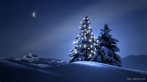 christmas trees in the snow wallpaper 4058 background