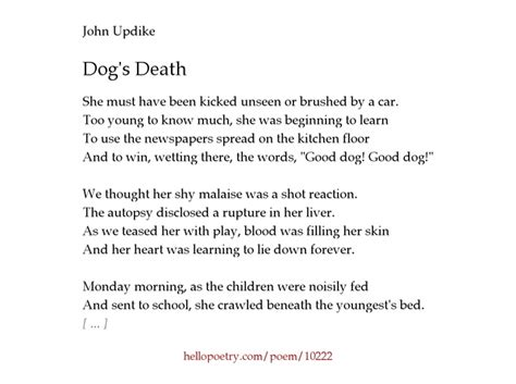 poems about dogs dying s updike poem thedruge390 web fc2