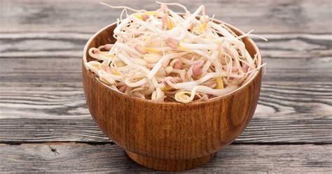 come cucinare i germogli di soia come cucinare i germogli di soia delle ricette