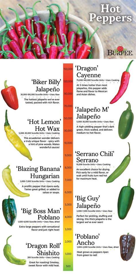 55 Best Images About Grow Peppers On Pinterest Gardens Vegetable Garden Menu