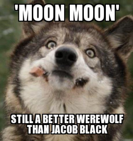 Moon Moon Meme - moon moon meme procrasturbation to waste time