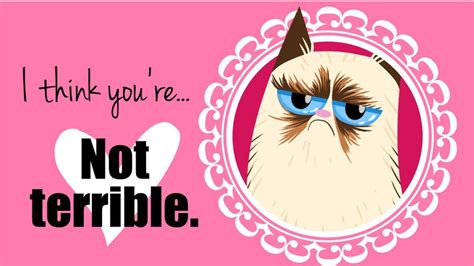valentines grumpy cat 20 grumpy cat valentines day photo lol me