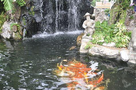 koi pond  waterfall pioneer thinking