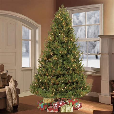 collection of home depot christmas trees for sale