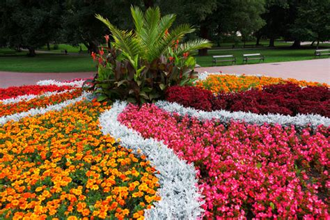design my flower bed flower bed in the park free stock photo public domain