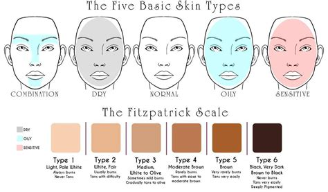 skin types skin types conditions nvei apothecary skincare