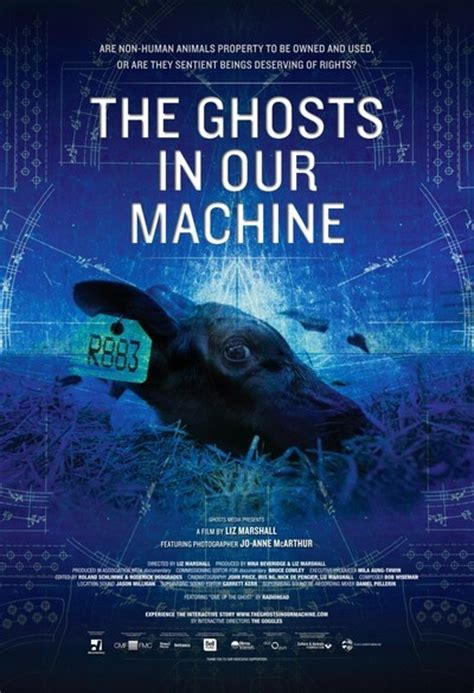 film ghost in the machine the ghosts in our machine movie review 2013 roger ebert
