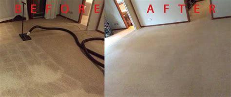 upholstery cleaning sunshine coast regency sunshine coast carpet cleaning carpet cleaning