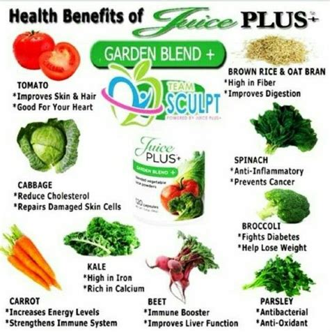 Juice Plus Detox Dieta by 25 Best Ideas About Juice Plus Detox On