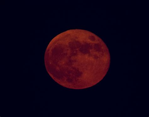 strawberry moon strawberry moon forever flickr photo sharing