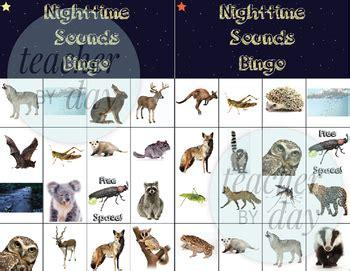 nighttime soundnocturnal animals bingo  teacherbyday tpt