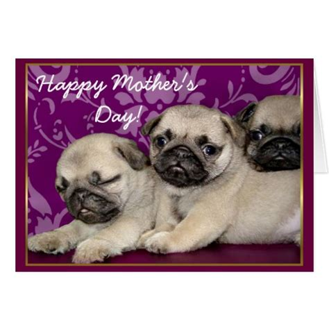 happy pug day happy s day pug puppies greeting card zazzle