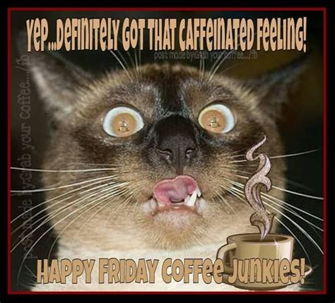 Friday Coffee Meme - happy friday coffee junkies pictures photos and images