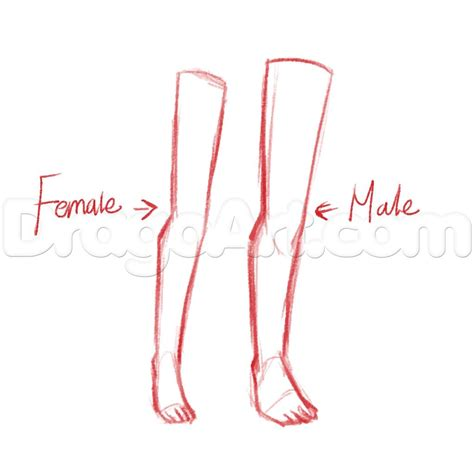 Drawing Legs by Legs Drawing Www Pixshark Images Galleries With A