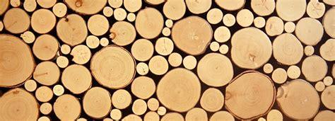 Bewerbung Ausbildung Holzmechaniker Holzmechaniker Holzmechanikerin Bewerbung Azubiyo