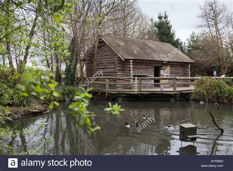 Cabins In Lake by Log Cabin On Lake Pictures To Pin On Pinsdaddy
