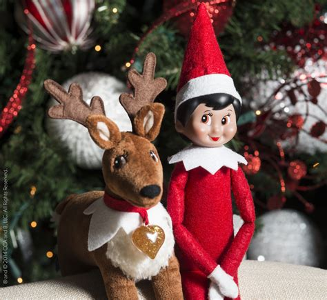Reindeer On The Shelf by The On The Shelf Now Has Reindeer Pet Ajc Parenting