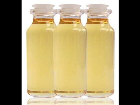 Minyak Kemiri 1 Liter minyak kemiri aleurites moluccana kukui candlenut