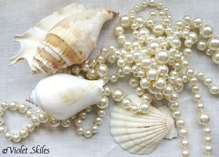 seashell decorations home decorate your home with seashells and seashell crafts from