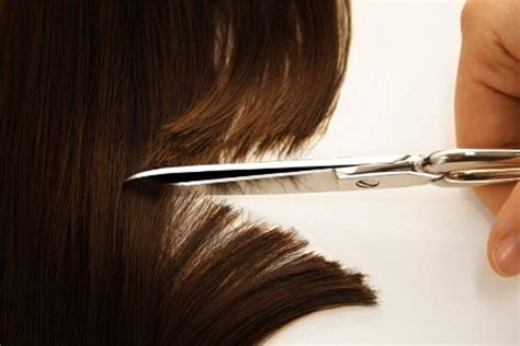 test antidroga capello test antidroga come affrontare l esame capello e