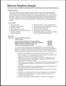 Resume Summary Statement by Sample Resume Summary Statements
