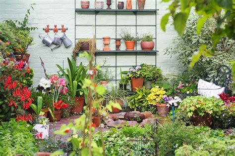 Pot Tanaman Succulent Putih T1310 3 konsep taman rumah dengan taman penuh bunga 1000
