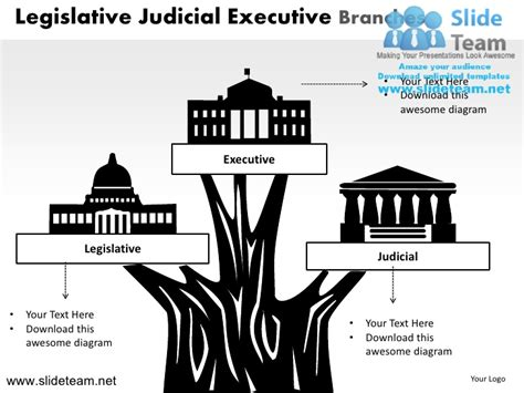 diagram of executive branch wiring diagram ppt wiring free engine image for user