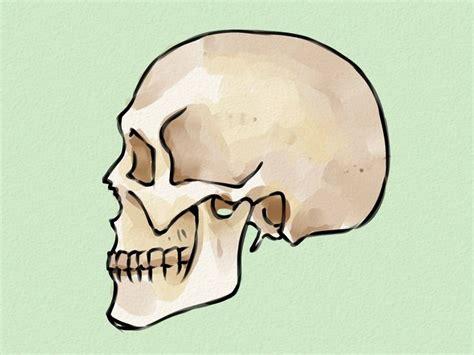 doodskop tekenen best 25 how to draw skulls ideas on pinterest simple