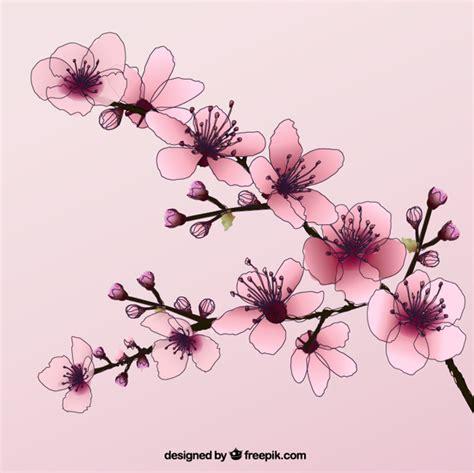 disegno fiore di ciliegio disegnati a mano fiori di ciliegio scaricare vettori gratis